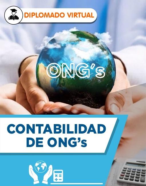 Diplomado en Contabilidad de ONGS